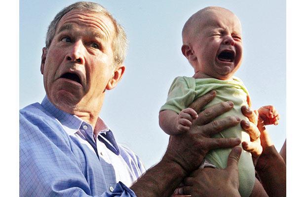 bush-baby_1016563i