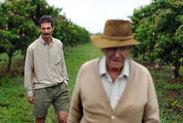 zimbabwe-farmers