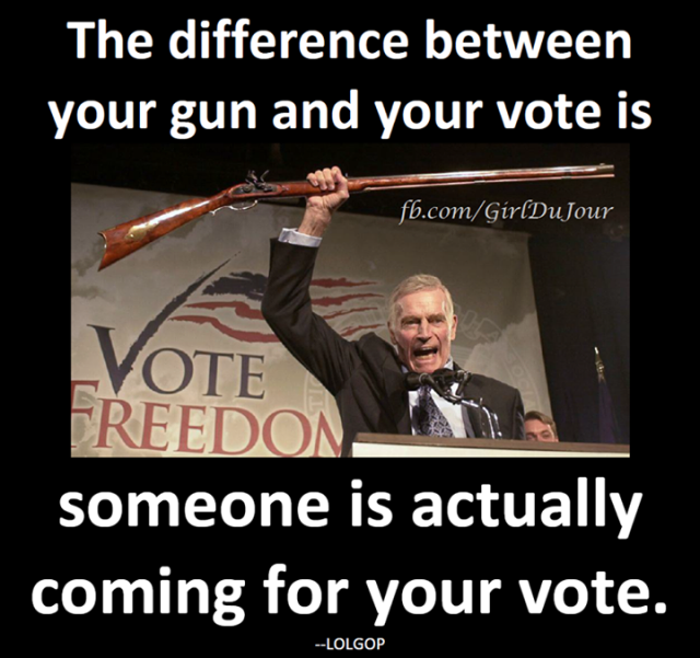 Guns and Votes